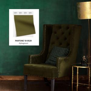 Verde - Sphagnum - Pantone